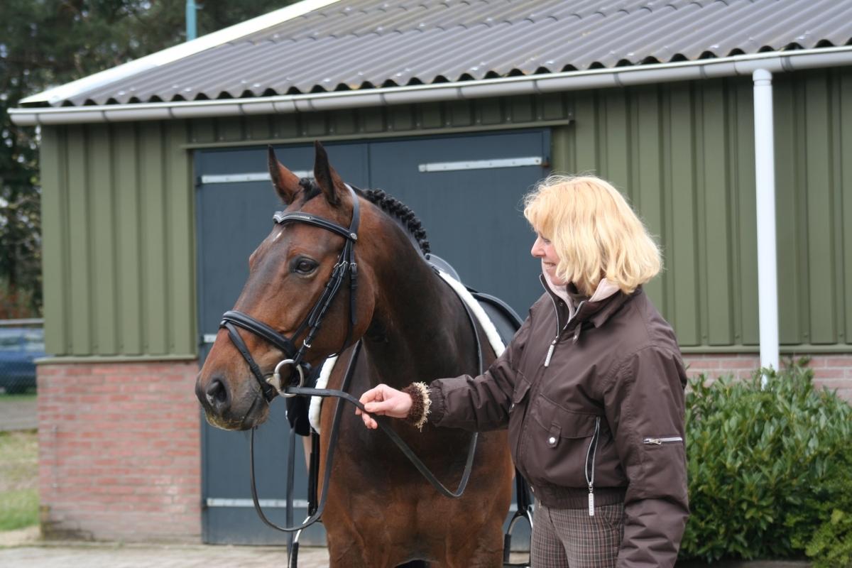 Weer winst voor Theresa van Ruitenbeek Z1-dressuur met Vertigo